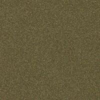 Display Olive Green Pearl-Coat Exterior Paint