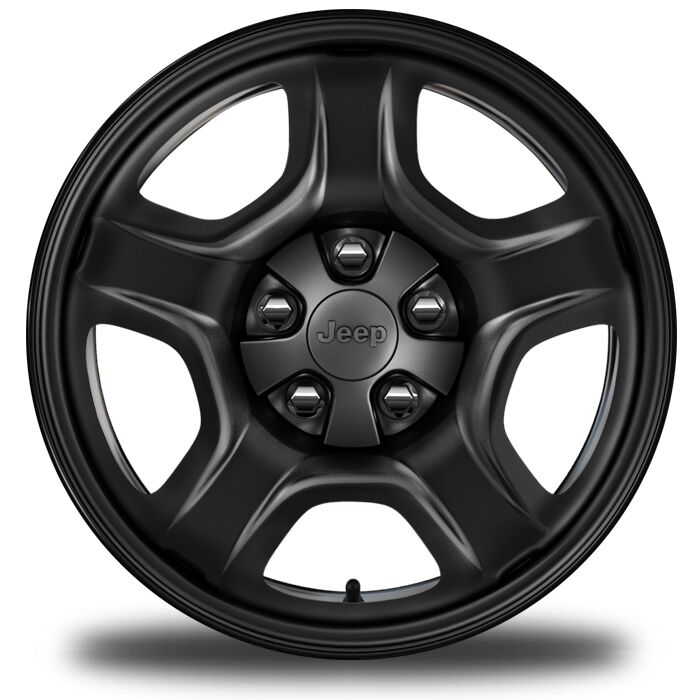 Display 16-Inch x 6.5-Inch Styled Black Steel Wheels
